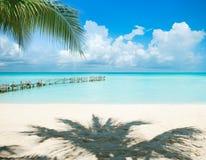 пляж caribbean Мексика Стоковые Изображения