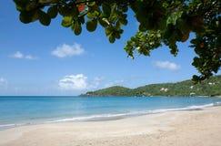 пляж caribbean Стоковые Фотографии RF