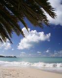 пляж caribbean Стоковые Изображения RF