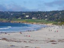 Пляж Carmel в зиме Стоковые Изображения RF