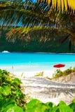 пляж carribean Стоковые Фото