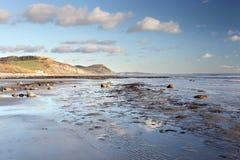 Пляж Charmouth стоковые изображения rf
