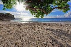 пляж curacao стоковое изображение