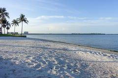 Пляж Fort Myers Флорида Стоковые Изображения RF