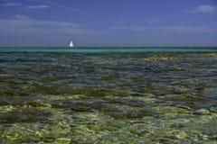 Пляж Isuledda, ветрило кандиды, San Teodoro, Сардиния, Италия стоковое фото rf