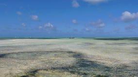 Пляж Jambiani, Занзибар стоковые фотографии rf