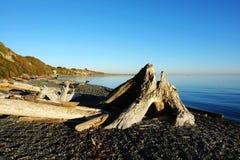 пляж james залива Стоковые Изображения