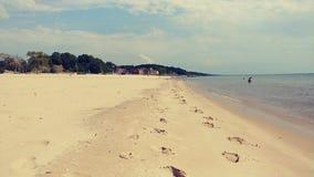 Пляж Lake Michigan стоковые фотографии rf