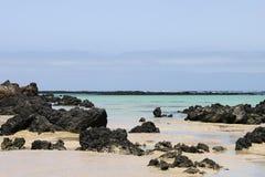 пляж lanzarote Стоковая Фотография