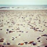 Пляж Lowestoft камешков стоковые изображения