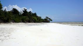 Пляж Michamvi, Занзибар стоковые изображения