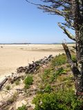 Пляж Popham Стоковое Изображение