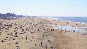 Пляж Scheveningen, Гаага видеоматериал