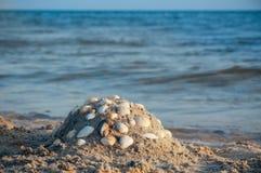 Пляж Seashore с песком, следами ноги в песке, лете песка и seashells стоковое изображение rf