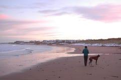 Пляж Snowy Aberdeenshire с женщиной и собакой Стоковые Фотографии RF