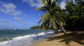 Пляж Tartane, Мартиника Стоковое Изображение