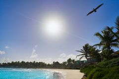 Пляж Tulum карибский в Майя Ривьеры Стоковое Изображение RF