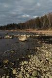 Пляж Veczemju Klintis - Больдэра в прибалтийской стране Латвии в апреле 2019 - об стоковое изображение