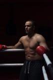 Пните боксера отдыхая на веревочках в угле Стоковые Фото