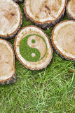 Пни дерева на траве с ying символ yang Стоковое фото RF
