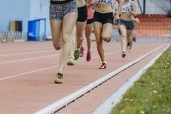Побегите девушки 800 метров Стоковые Изображения