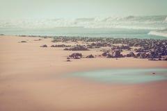Побережье Атлантического океана скалистое Стоковое Изображение RF