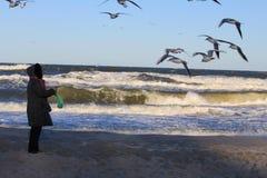Побережье Балтийского моря в зиме Стоковое Изображение