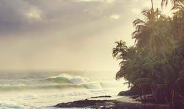 Побережье в Коста-Рика Стоковое Изображение