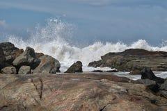 Побережье Индийского океана в Шри-Ланке стоковая фотография rf