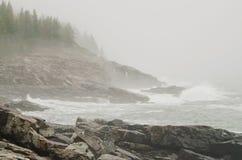 Побережье национального парка Acadia скалистое Стоковая Фотография