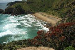 Побережье Новой Зеландии Стоковая Фотография