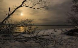 Побережье озера в зиме Стоковые Изображения