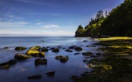 Побережье океана, WA Стоковое Изображение
