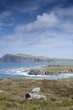 Побережье около деревни Ballyferriter, полуострова Dingle Стоковое Фото