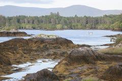 Побережье около пляжа Ardgroom; Полуостров Beara; Пробочка Стоковая Фотография