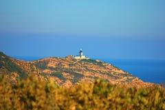 Побережье острова corisca с красивым голубым морем стоковое фото rf