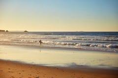 Побережье пляжа с волнами стоковая фотография rf
