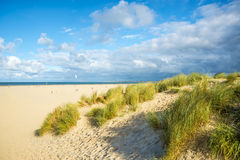 Побережье & пляж - порт Zealande Северного моря нидерландский Стоковое Изображение RF
