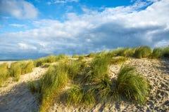 Побережье & пляж - порт Zealande Северного моря нидерландский Стоковая Фотография RF