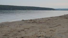 Побережье реки Sandy или крупный план озера в вечере Горы видимы в расстоянии сток-видео