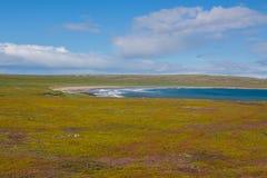 Побережье Северного моря, солнечная погода Стоковые Изображения