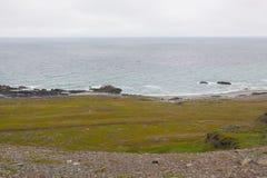 Побережье Северного моря Стоковые Изображения
