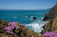 Побережье северной калифорния Стоковое Изображение