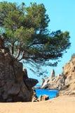 Побережье Средиземного моря скалистое, Испания Стоковая Фотография RF