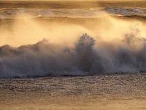 Побережье с волнами Стоковое Изображение