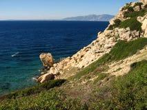Побережье Эгейского моря Турции, причудливое дерево, Стоковое Изображение