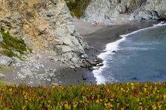 Побережье Bodega Стоковое фото RF