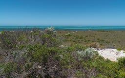 Побережье, Cervantes, западная Австралия Стоковые Фотографии RF