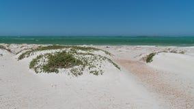 Побережье, Cervantes, западная Австралия Стоковое Изображение