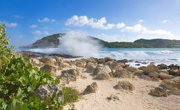Побережье Half Moon Bay Атлантического океана - карибский тропический остров - Антигуа и Барбуда стоковое изображение rf